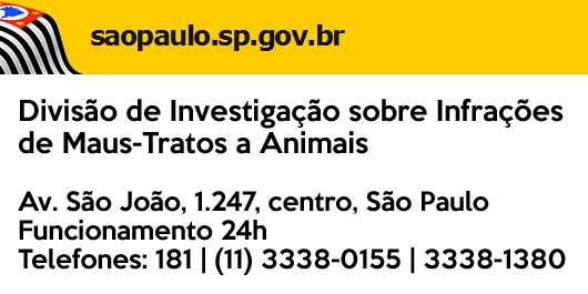 Maus tratos contra os animais em São Paulo