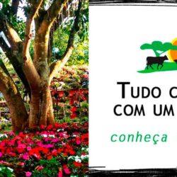 RuralSLS - Associação Rural de São Lourenço da Serra